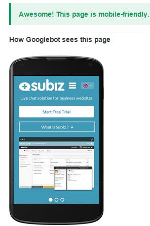 subiz mobile friendly test result
